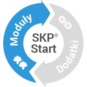 Wystawiaj faktury i inne dokumenty sprzedażowe w programie księgowym SKP® dla średniej i małej firmy.